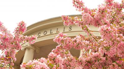 Collis in spring