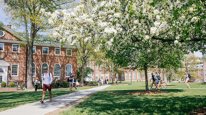 Students walk across the Green in spring.