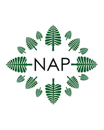 Centered NAP logo
