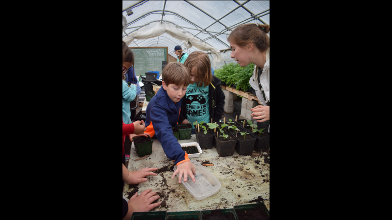 Group of student at organic farm in greenhouse