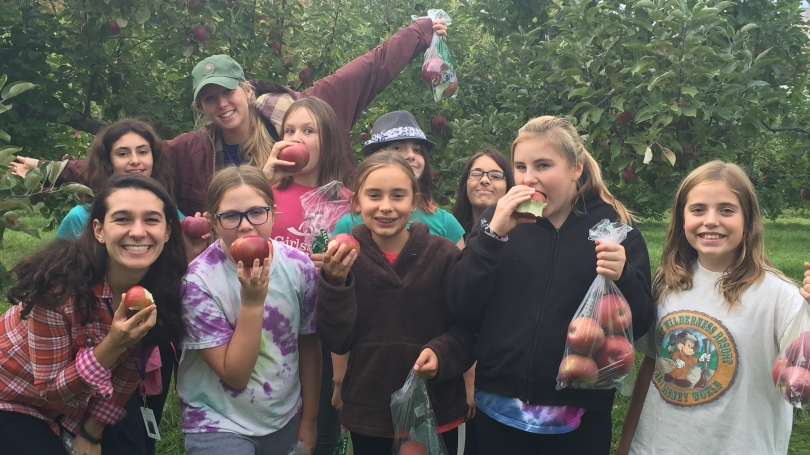 Students and mentees apple picking in an orchard