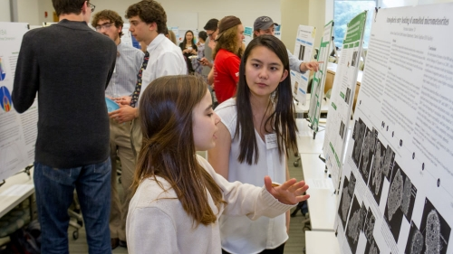 Students check out the research posters at the 2017 Wetterhahn symposium.