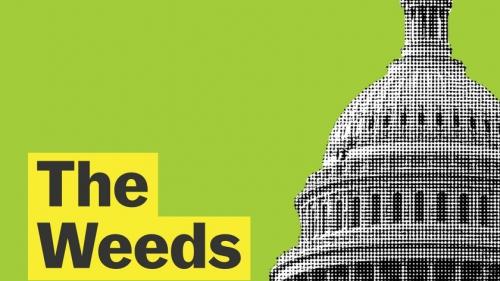 Vox, The Weeds