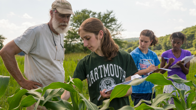 Students conducting mentored research in a field at the Dartmouth Organic Farm.