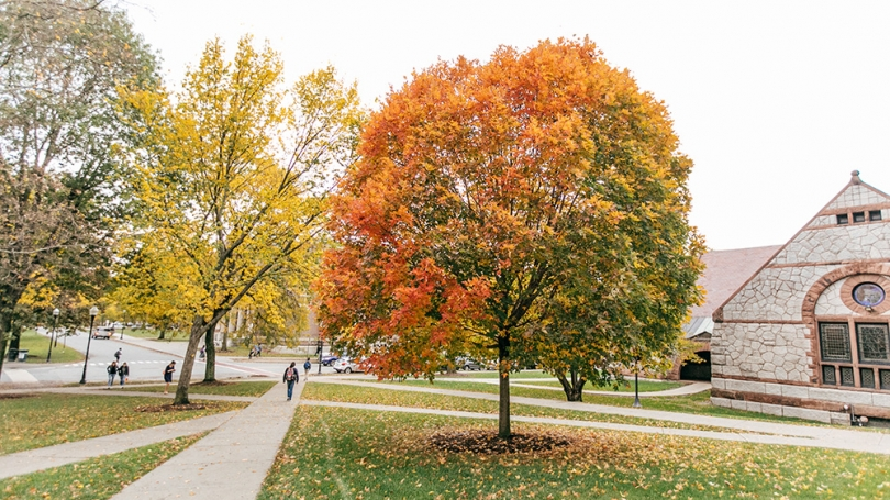 Campus during the fall.