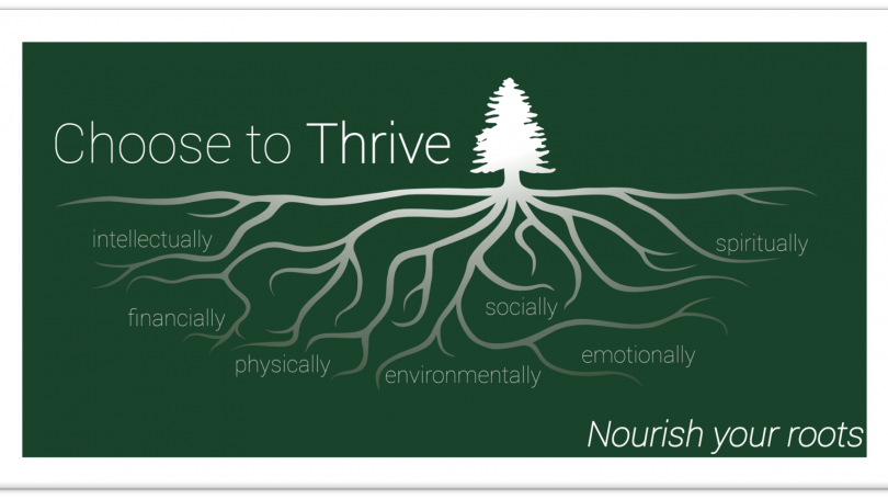 Choose to Thrive, Pine tree with roots labelled intellectually, financially, physically, environmentally, socially, emotionally, spiritually