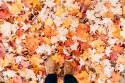 A student stands among the fallen leaves.