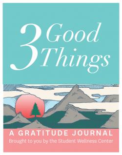 Gratitude Journal Instructions